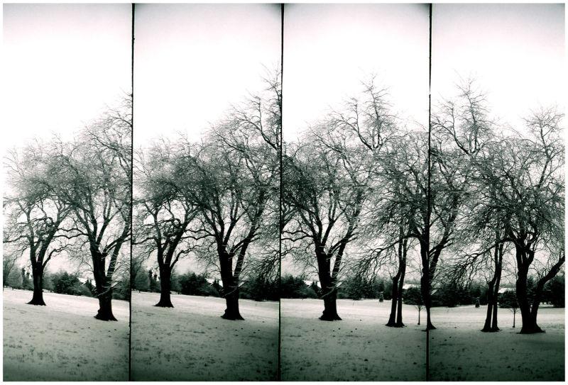 park in snow - lomo supersampler - b&w