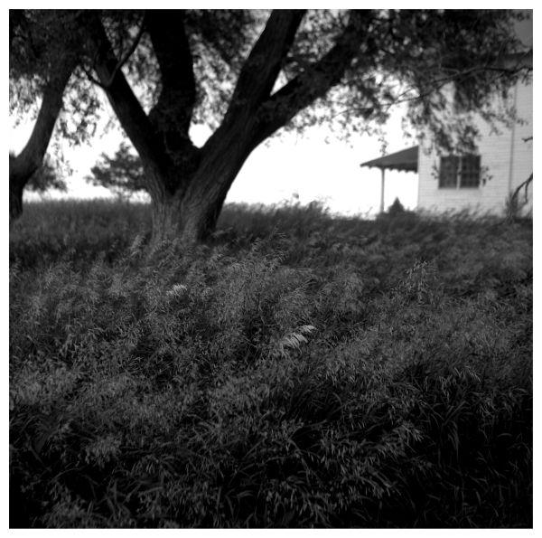 highland, ks farm house - rolleiflex photograph