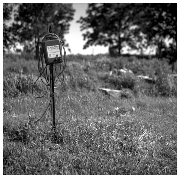 electric fence - highland, ks - rolleiflex, b&w