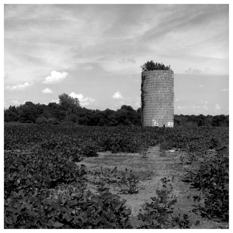silo in drexel, mo - grant edwards photograph