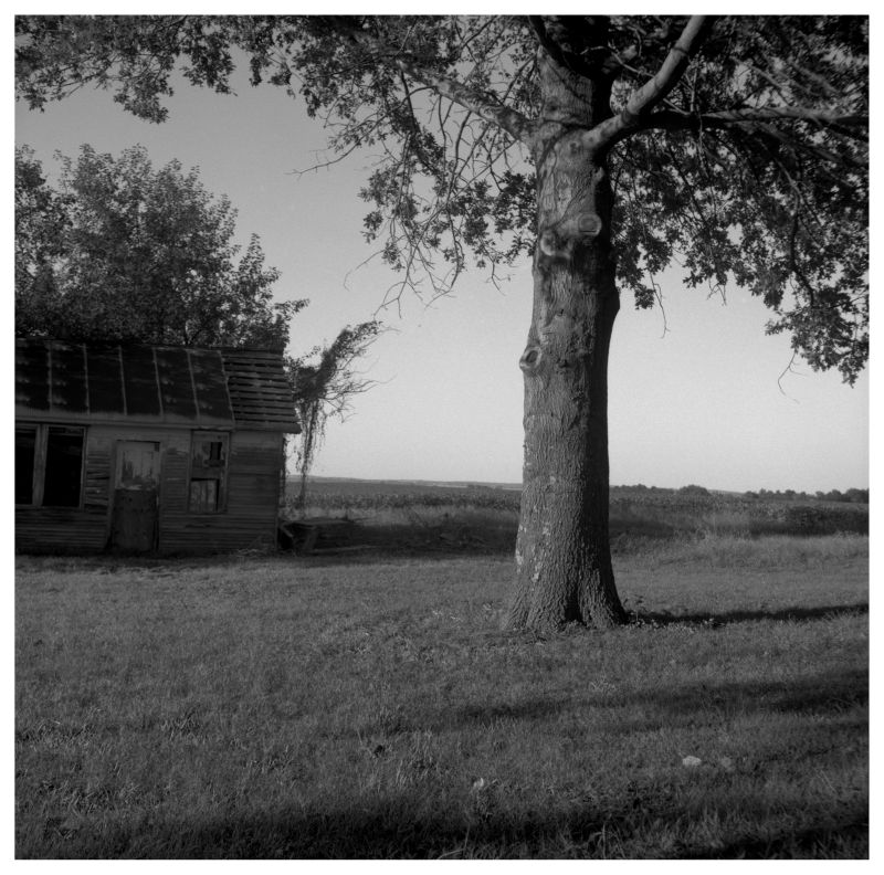 kansas farm - grant edwards photograph