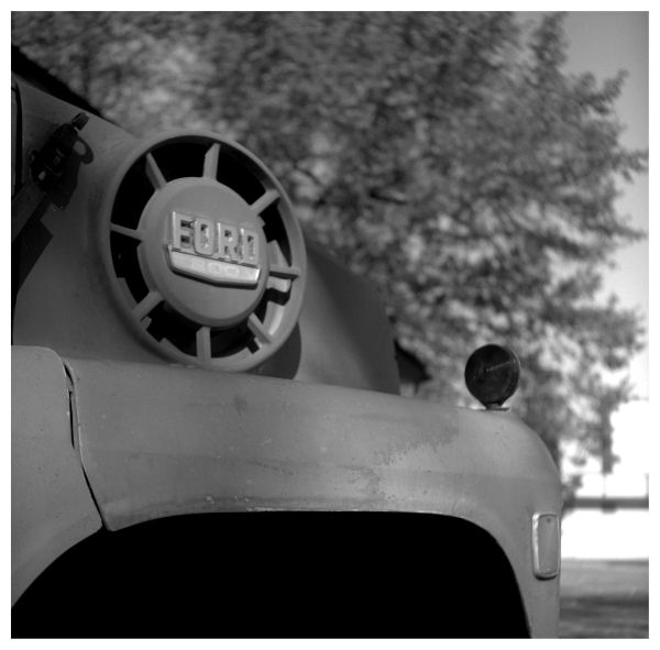 ford truck - grant edwards photograph