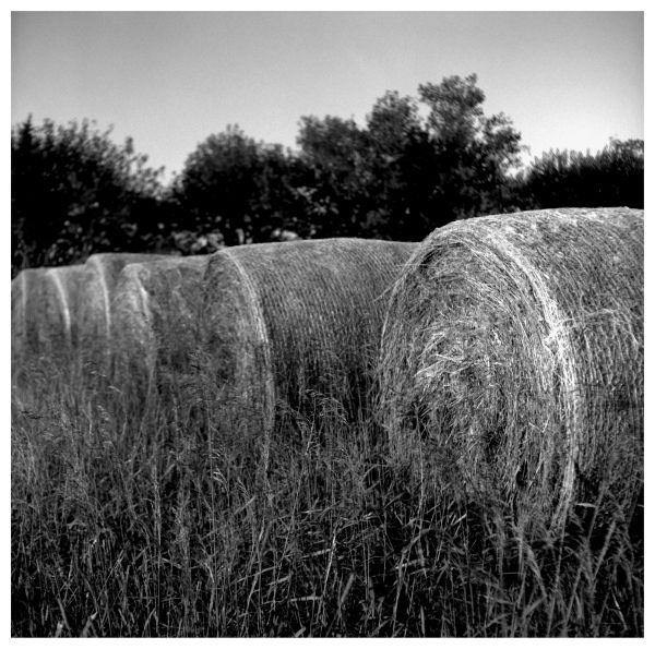 hay, highland, ks farm - grant edwards photograph