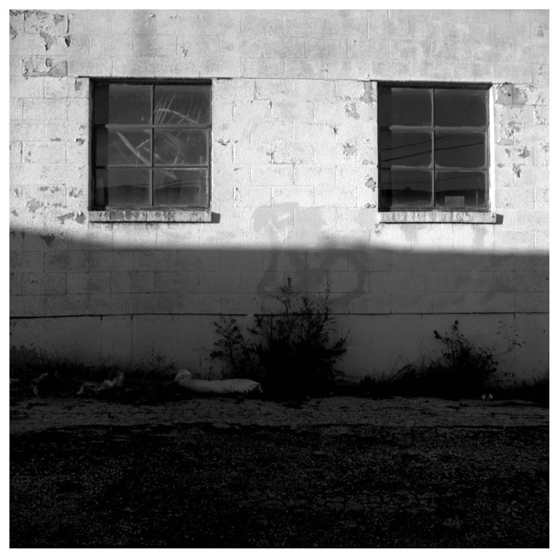 alley windows - grant edwards photography