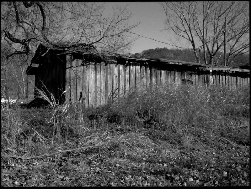 waldron, mo shed - grant edwards photography