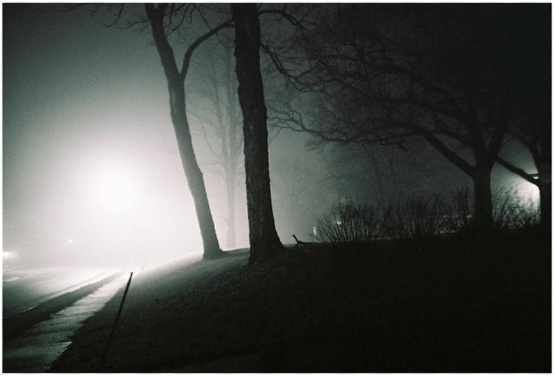 fog at night - grant edwards photography