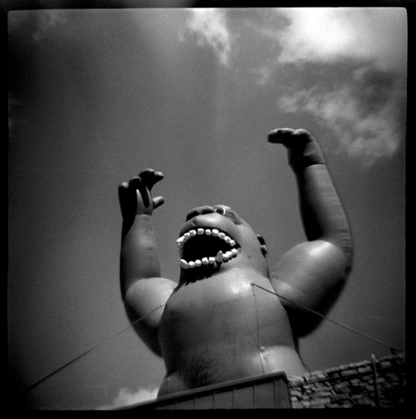 inflatable gorilla - grant edwards photography