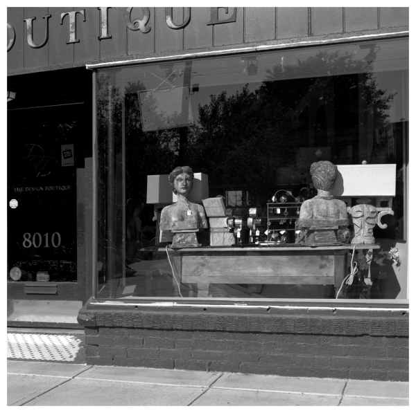 busts in window - grant edwards photography