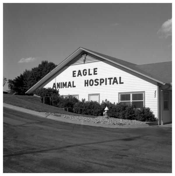 eagle animal hospital - grant edwards photography