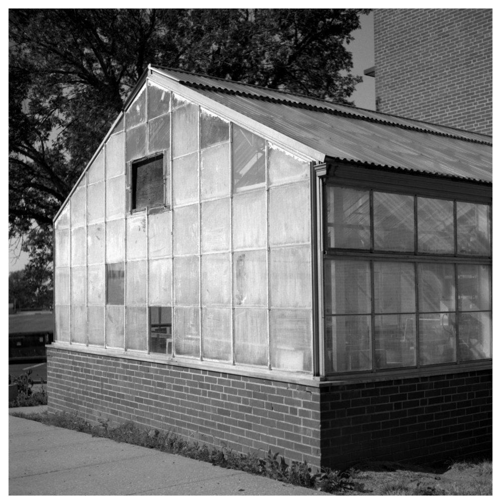 st. mary's greenhouse - grant edwards photography