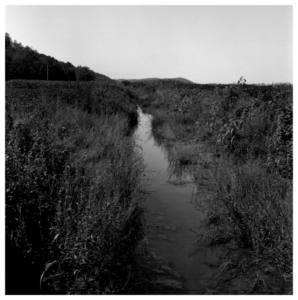 low ditch - grant edwards photography