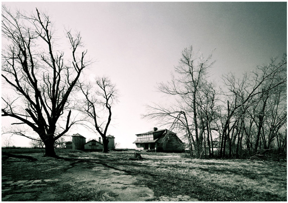 longview farm - grant edwards photography