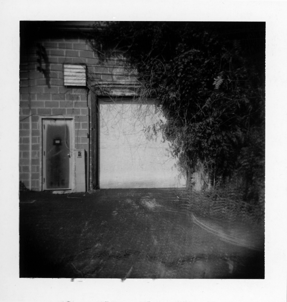 back door - grant edwards photographer