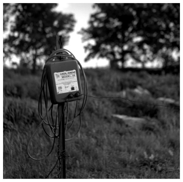 hol dem fence - grant edwards photography