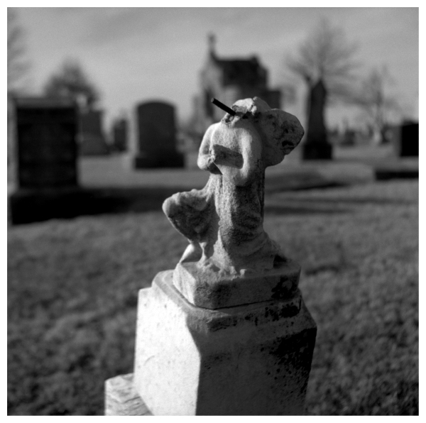 st. mary's cemetery - grant edwards photography