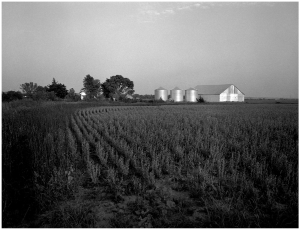 kansas farm - grant edwards photography