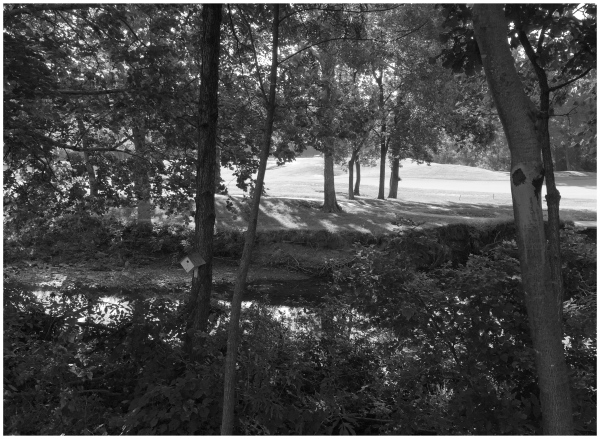 Overland Park Kansas Grant Edwards