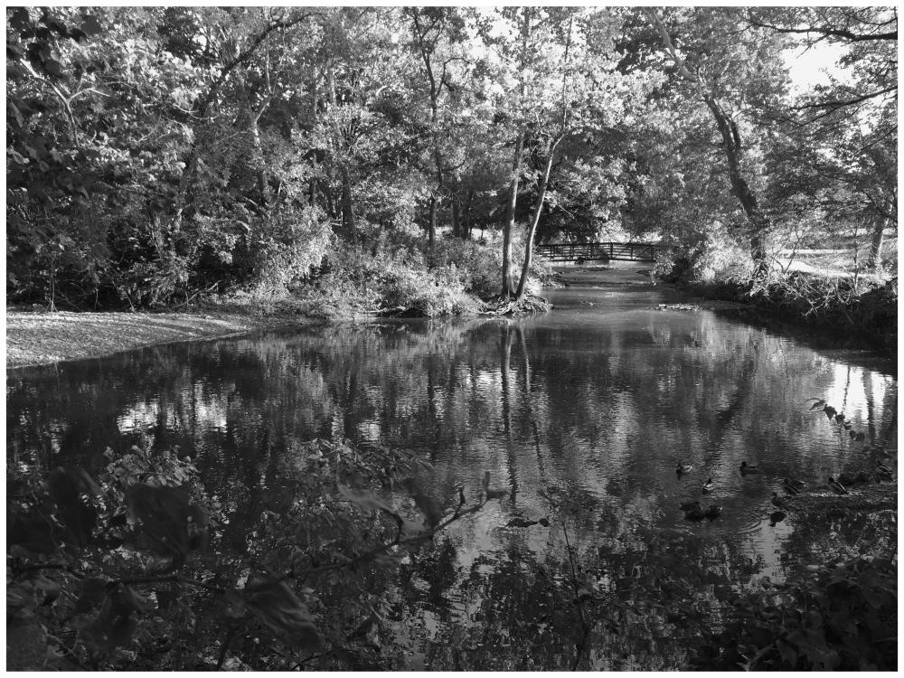 Overland Park Kansas Grant Edwards photography