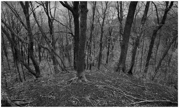 weston missouri grant edwards photography