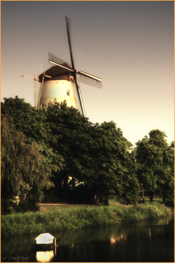 Windmills of my mind...