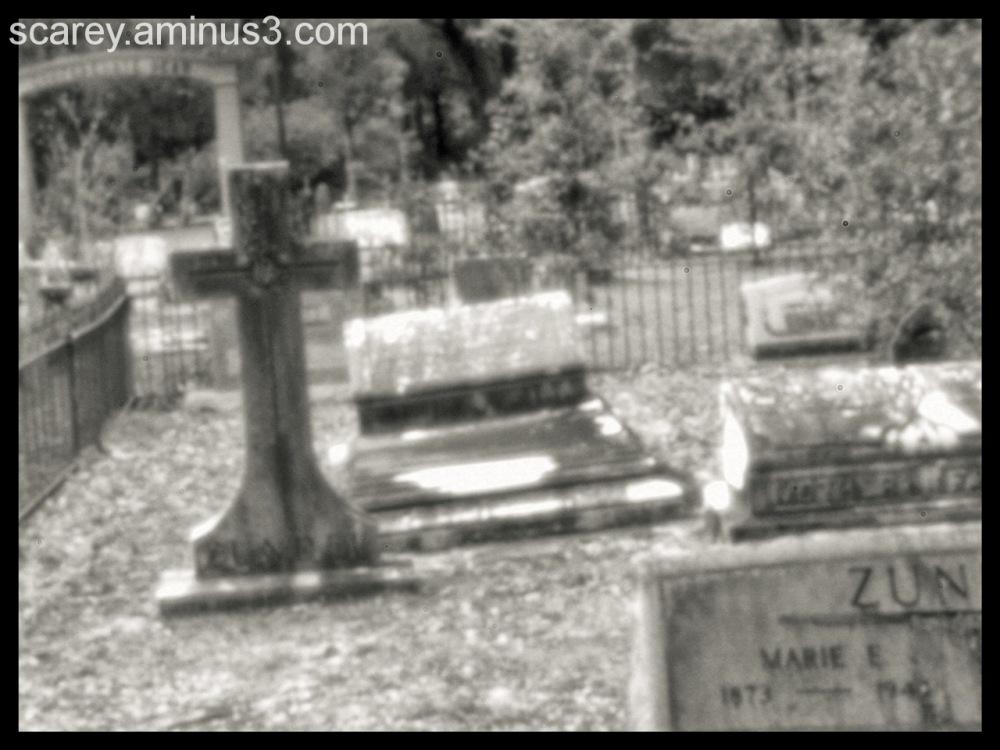 Pinhole Photograph Pt. Clear Alabama Cemetery