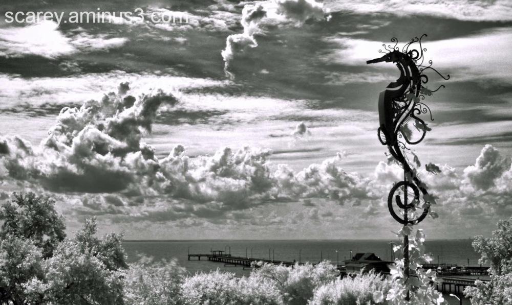 IR image of Mobile Bay