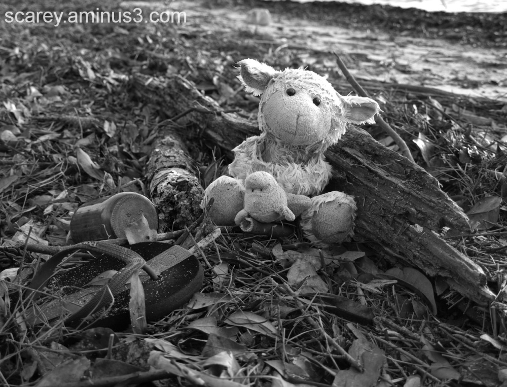 Image of a lost stuffed animal washed up on beach