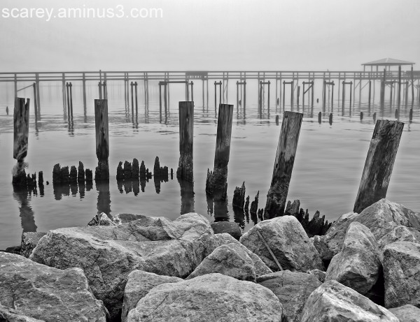 Rocks and Pilings Along Mobile Bay, Alabama