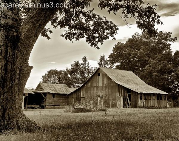 Rural farm in Alabama