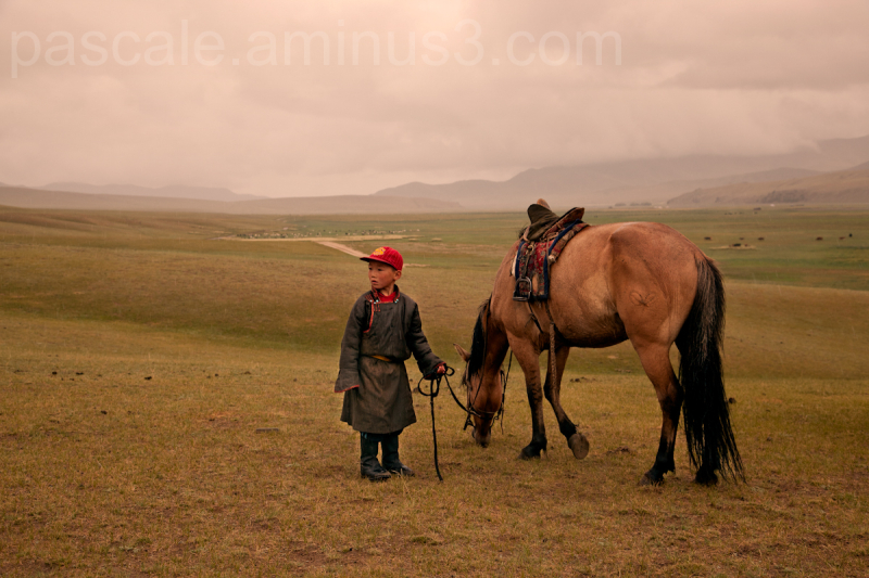Mongolie - mosaïque