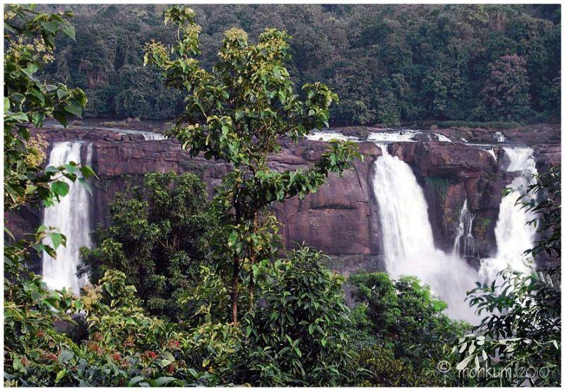Sholayar forest 4