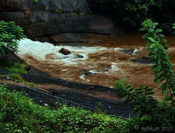 waterfalls thodupuzha kerala