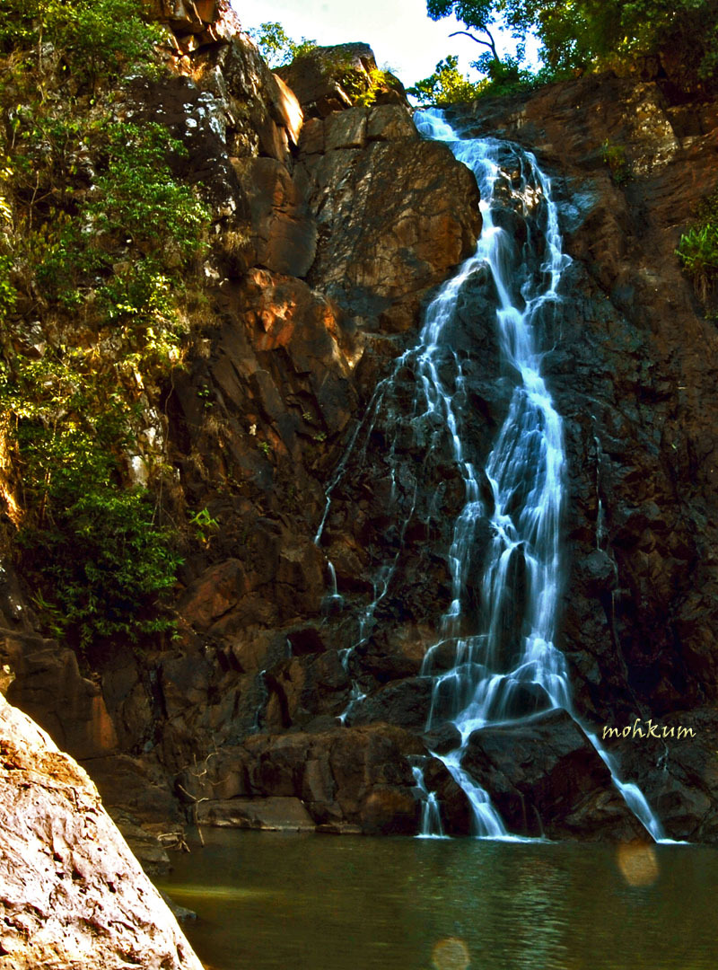 The wild falls!