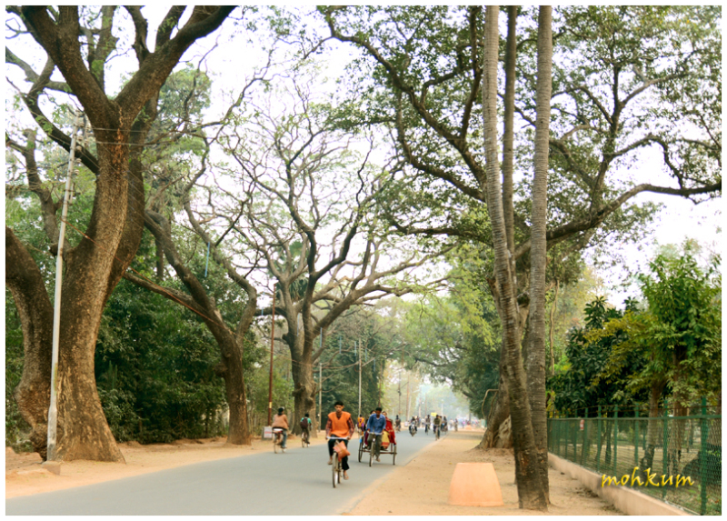 Through the streets of Santiniketan!