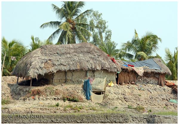 mud house village sunderbans