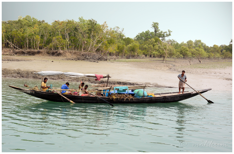 fishing boat sunderbans kolkata