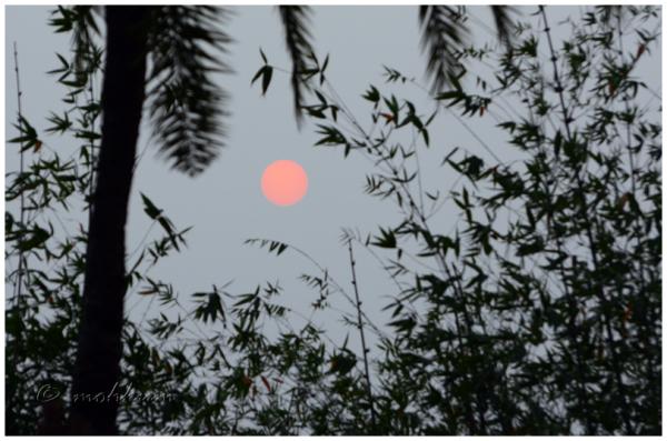 The late sun!