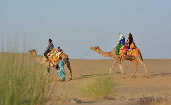 The Camel ride!
