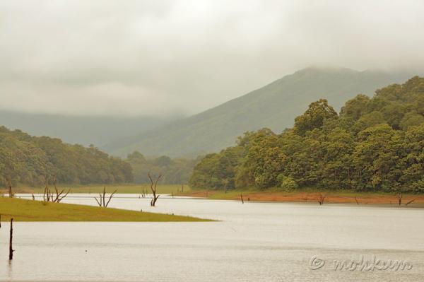 A view from the 'Lake Palace', Thekkady!