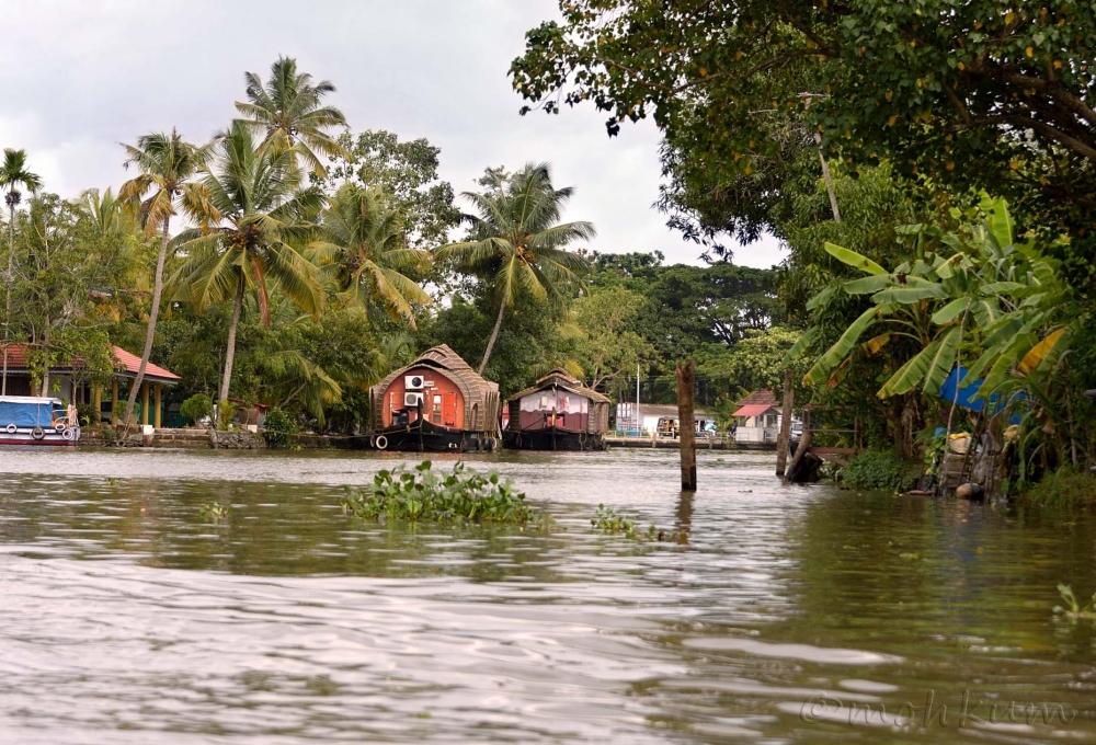 The backwaters of Kerala!