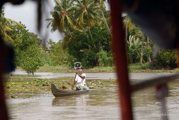 boat river kumarakom