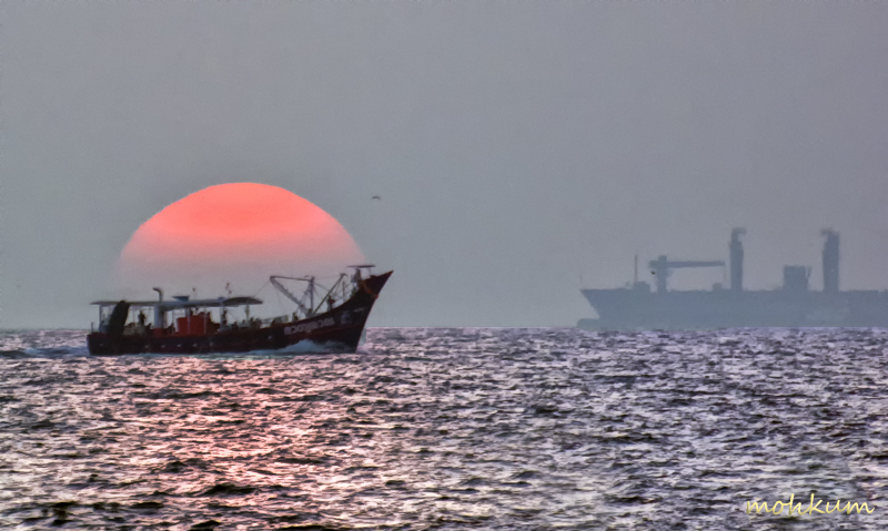 sunset boat sea fortkochi