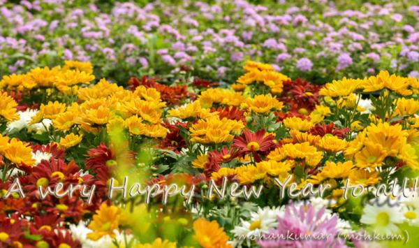 flower newyear 2018