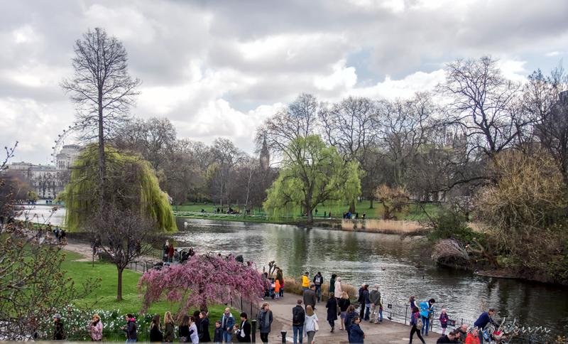 park lake garden