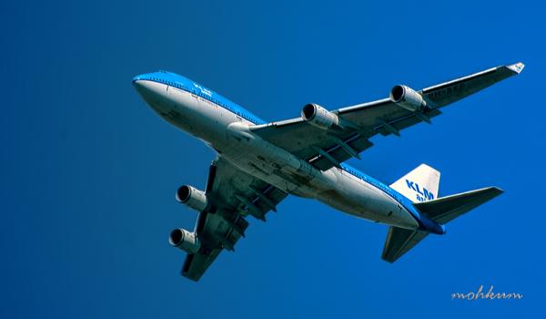 aeroplane airline klm jumbo netherland
