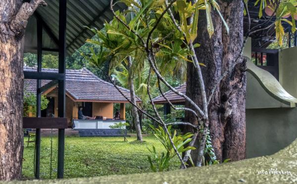 house courtyard lawn plathanam thalavady kuttanad