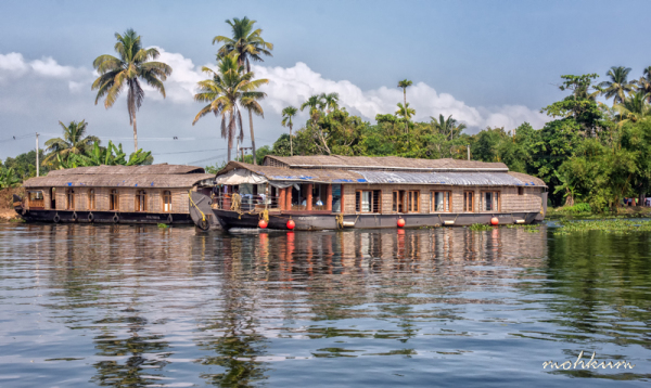 houseboat lake vembanad