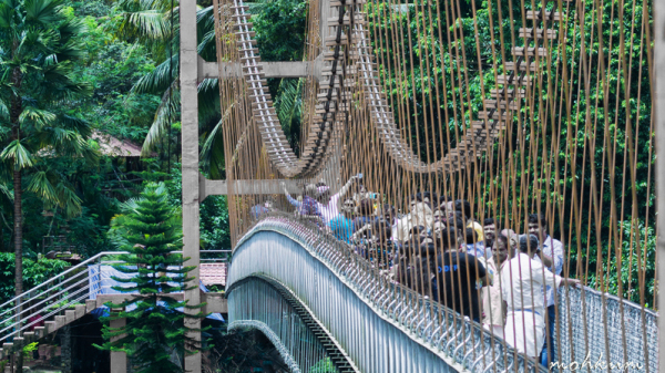 hanging bridge thumboormozhi chalakkudy river