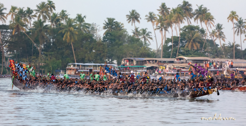boat race kerala backwaters