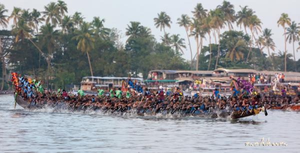 boat race kerala backwaters